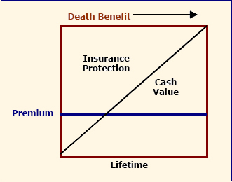 Whole Life Vs. Level Term Life Insurance